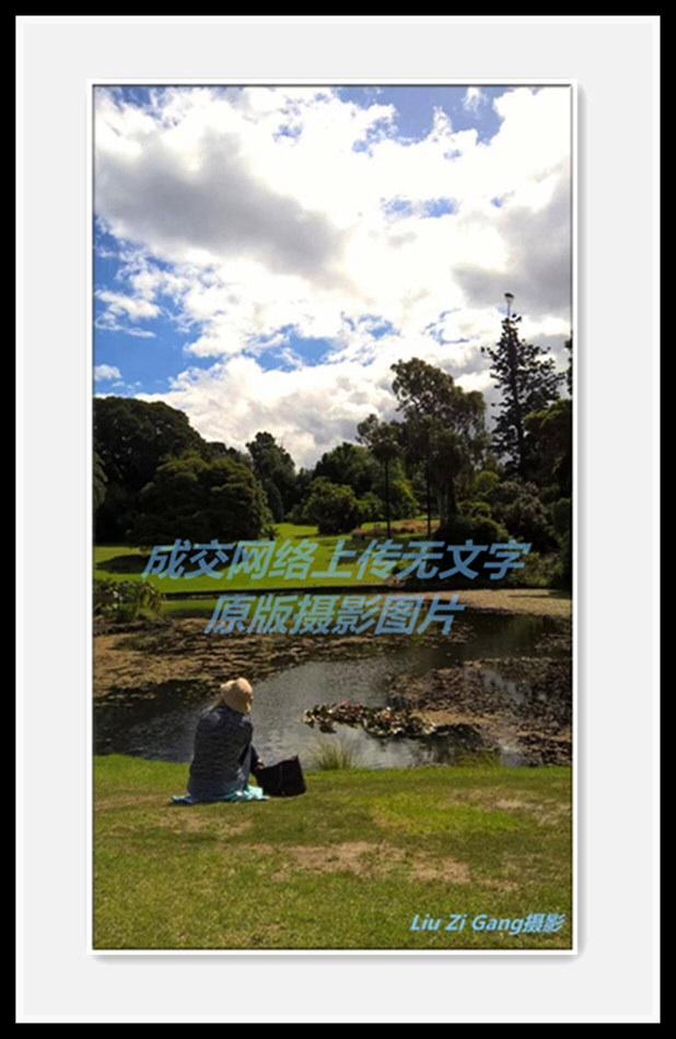 澳洲风光原色摄影《坐览云烟》